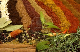 Healthy Herbs